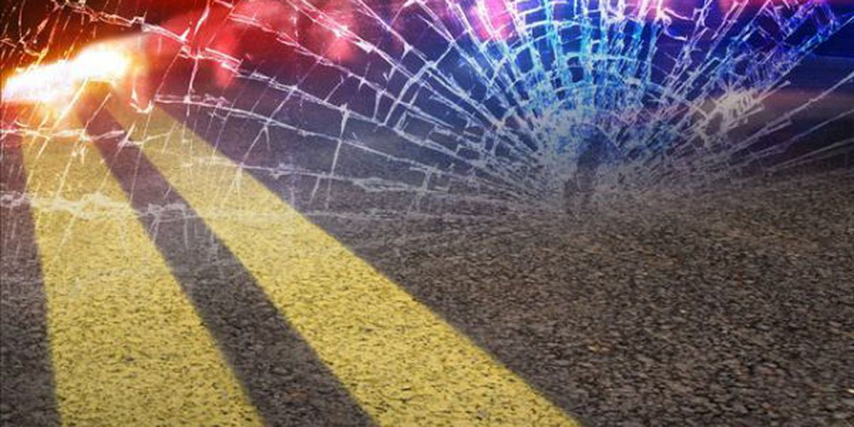 Driver charged with DWI after deadly New Year's Day crash