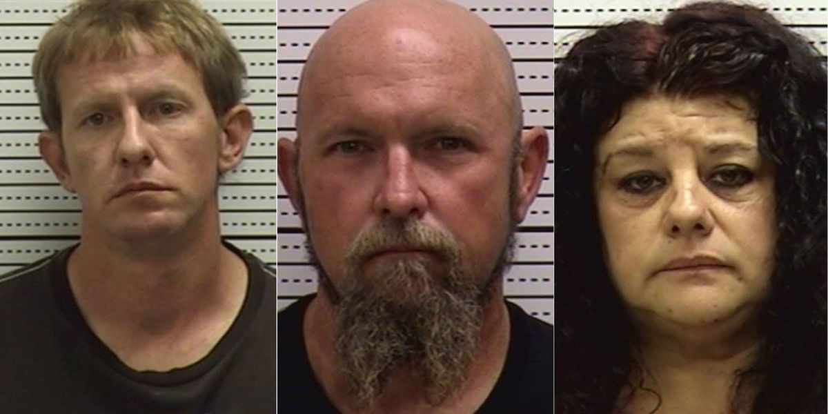 Three charged with selling meth in Brunswick County