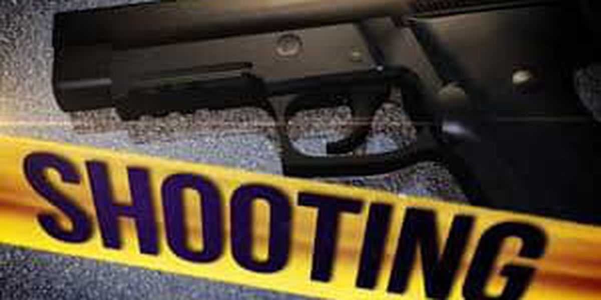 Brunswick County investigating Saturday afternoon shooting in Longwood