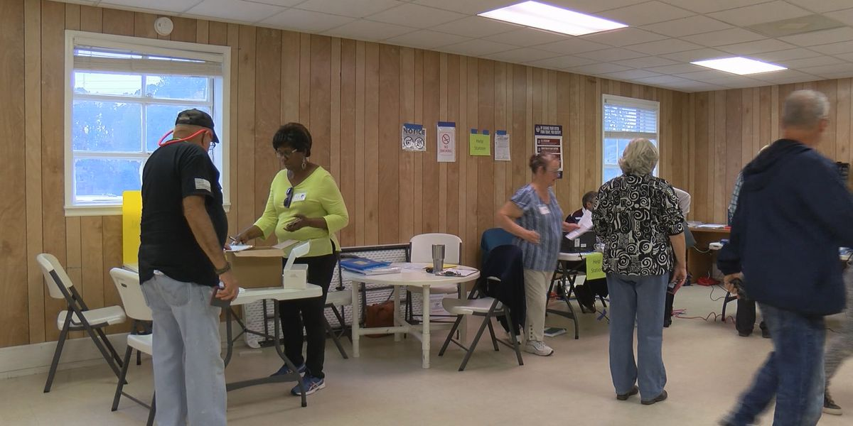 Power outage causes minimal delays at Leland polling location