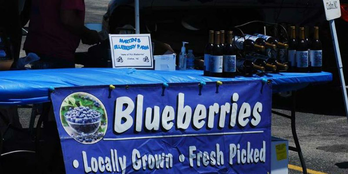 Burgaw hosts 15th annual NC Blueberry Festival this weekend
