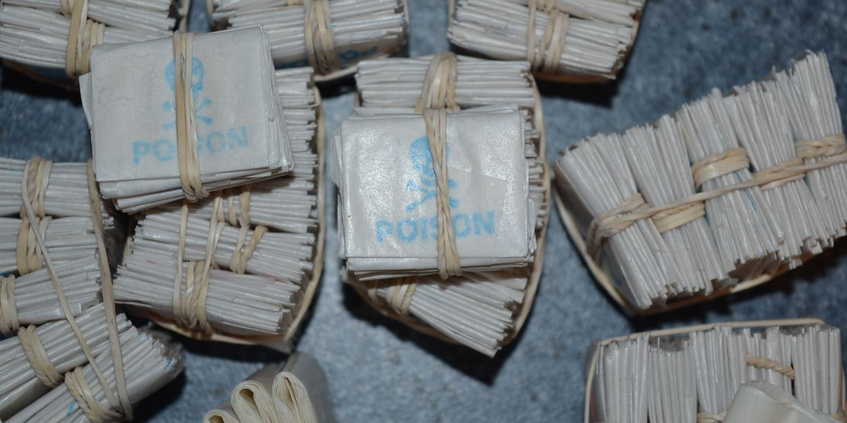 Drug bust reveals 600 bags of heroin and handgun; two validated gang members arrested