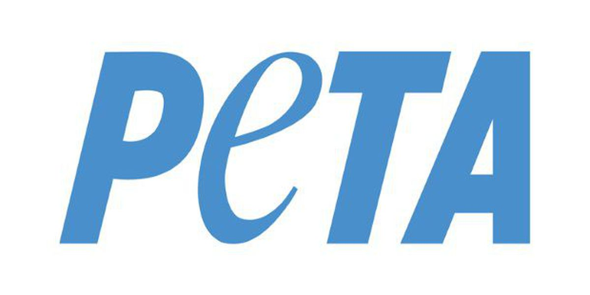 PETA to fly banner over southeastern NC beaches this weekend