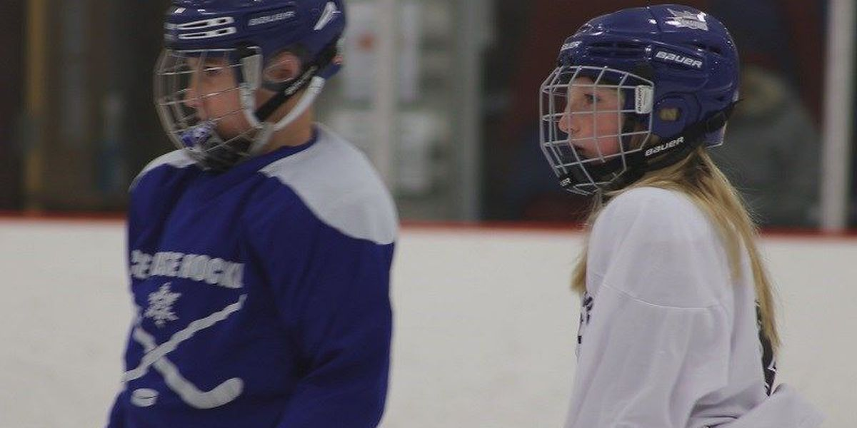 Work to get first all-girls hockey team on the ice gets a boost