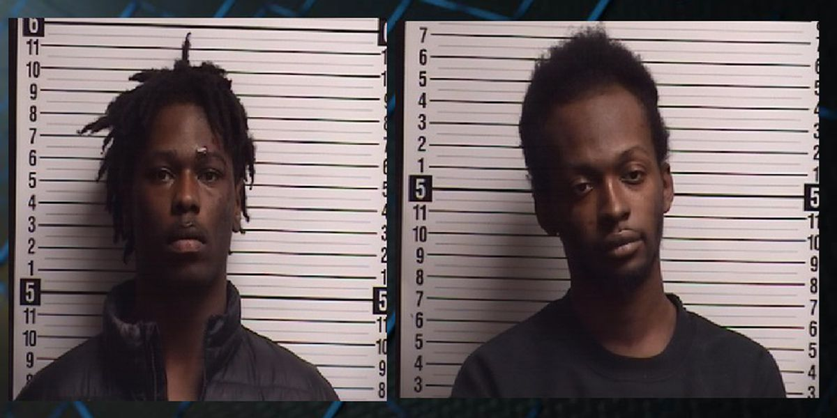 Pair charged for breaking deputy's hand, assaulting Brunswick Co. law enforcement