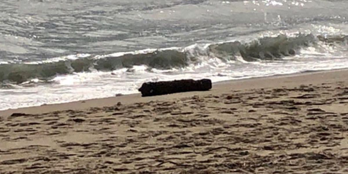 Unexploded bomb found near Cape Hatteras Lighthouse
