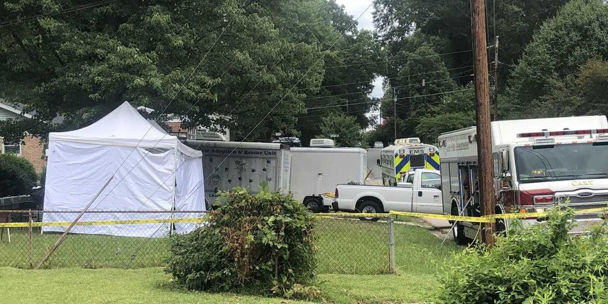 Hundreds of animals removed from N.C. home as part of animal welfare investigation