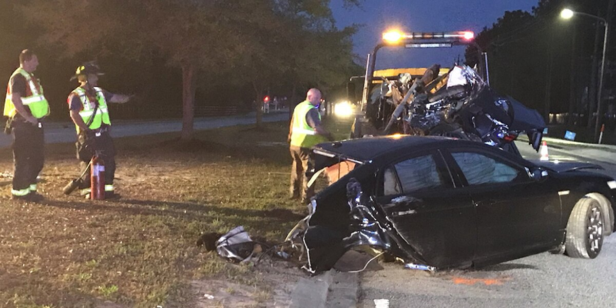 Car split in half after driver crashes into tree
