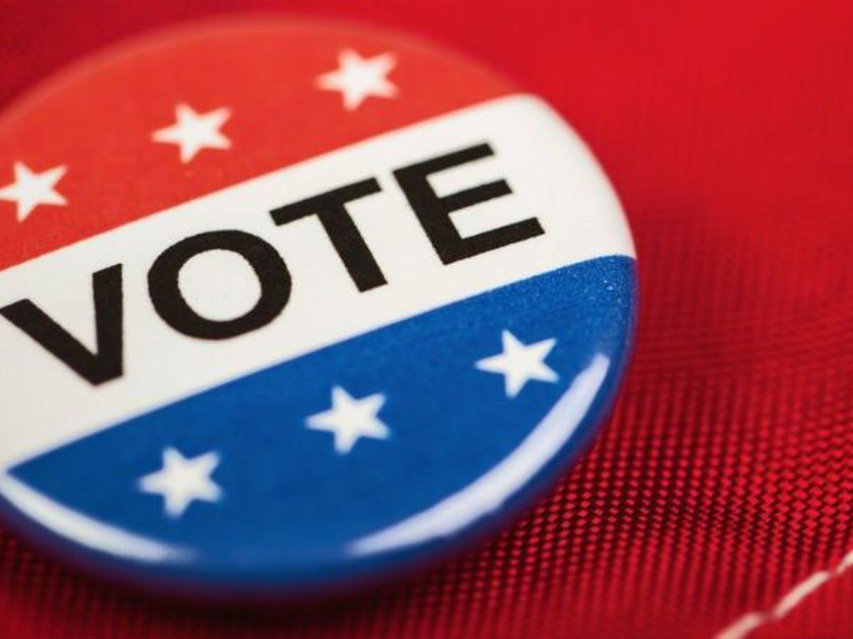 Brunswick County to hold educational seminars about voter ID requirements