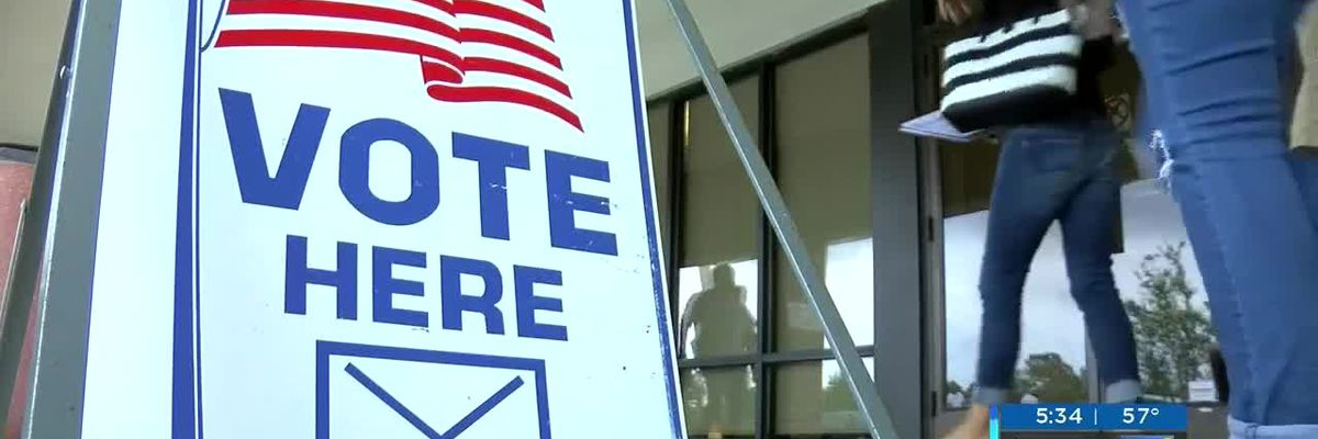 Wilmington's municipal elections to cost 20 percent more this year