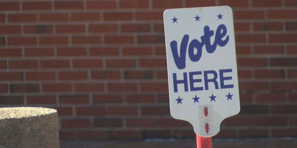 Incumbent, 2 newcomers take democratic nominations for NHC Board of Commissioners