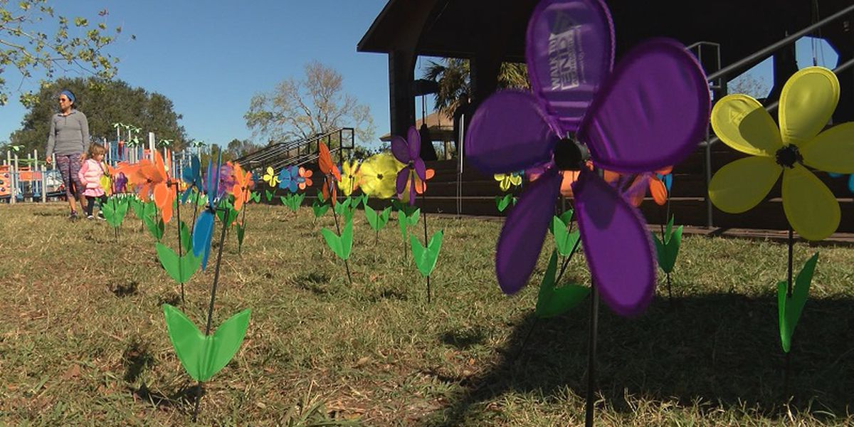 Hundreds walk to find a cure for Alzheimer's