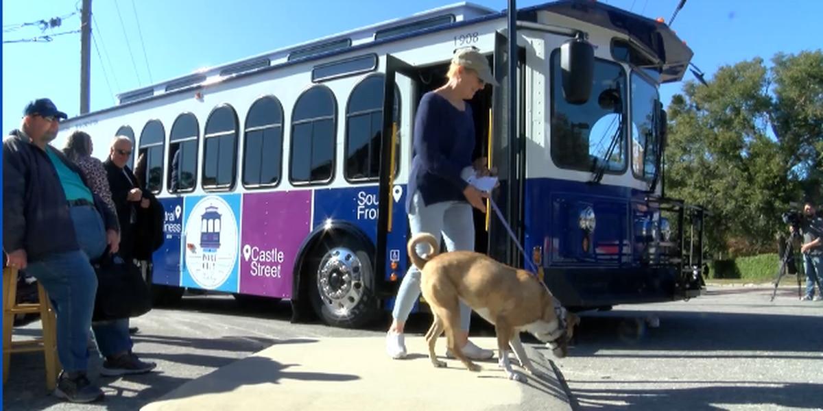 WAVE Transit unveils new Port City Trolley Program