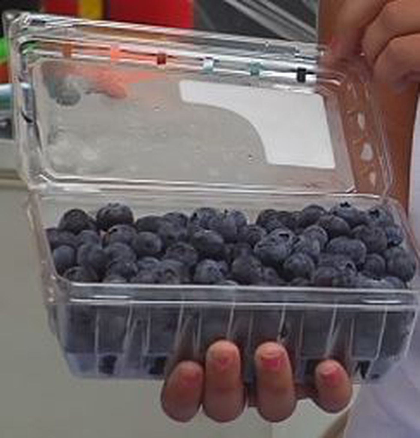 Highway 6: Blueberries produce huge health benefits