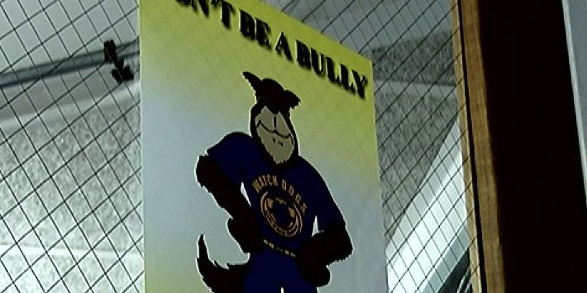 Stopping Bullies: The investigation process inside New Hanover Co. schools