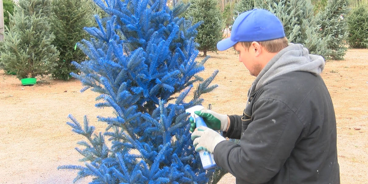 Police officer sells blue Christmas trees in support of law enforcement