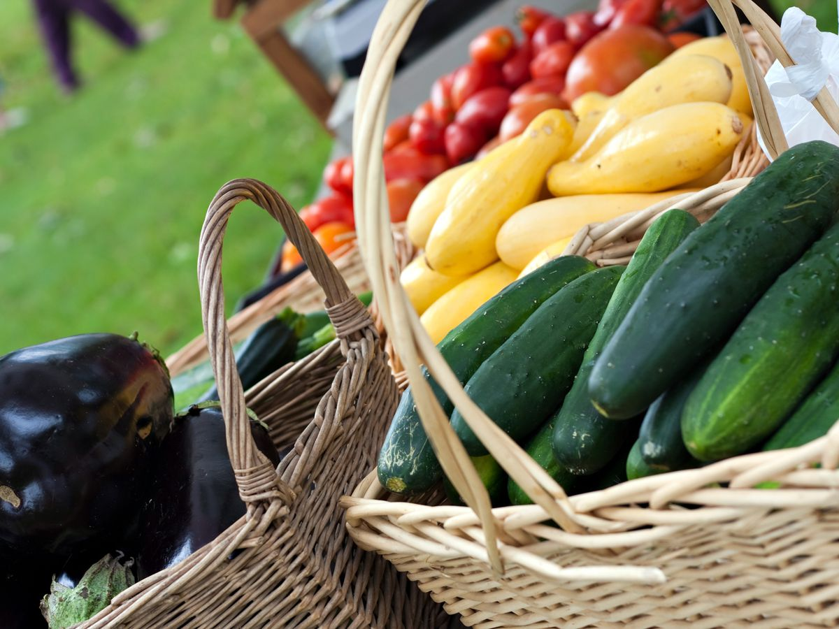 Two southeastern NC summer meals programs recognized by USDA