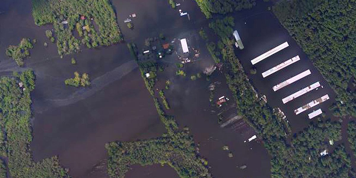 Seed initiative helps local farmers recovering from Florence restore fields