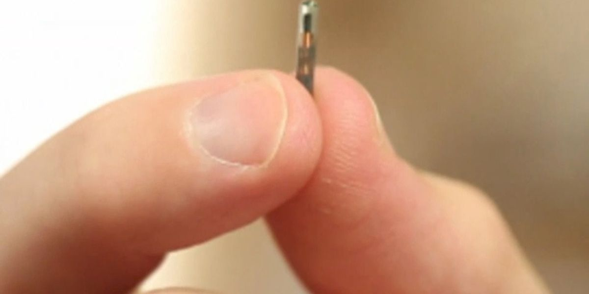 Bill to regulate microchipping employees introduced