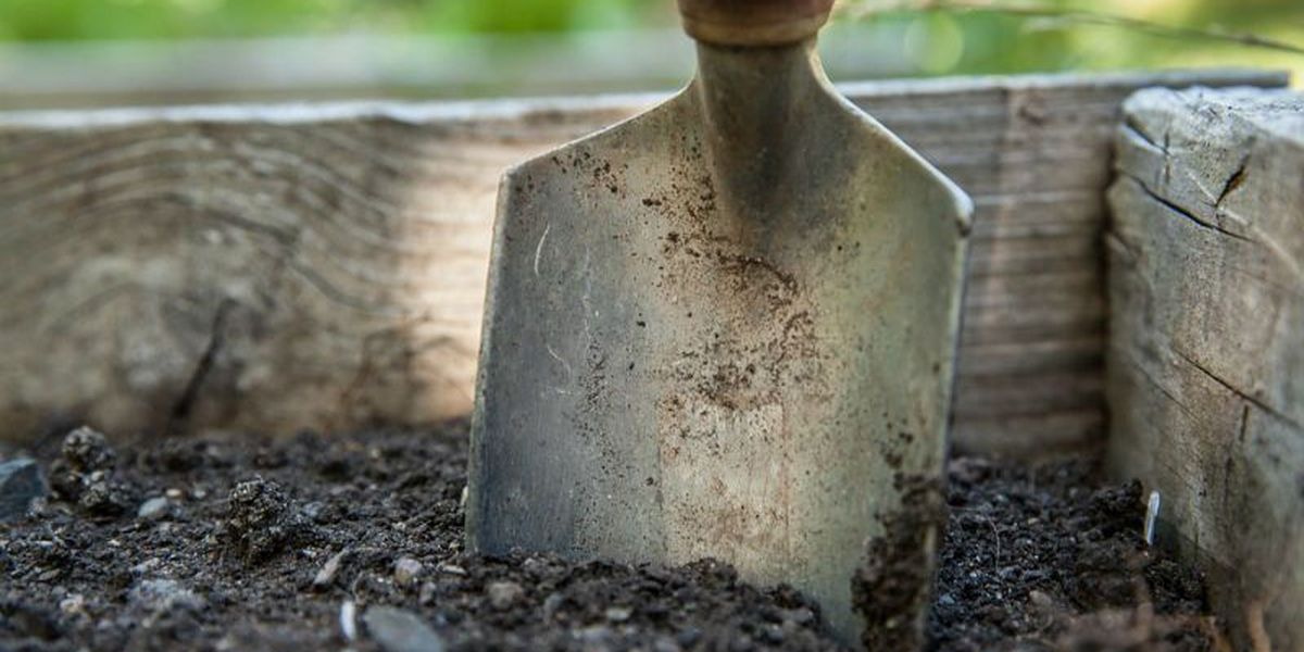 Get free gardening tips Wednesday at Maides Park