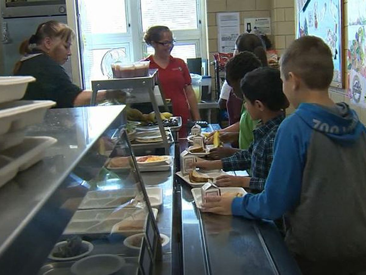 Three New Hanover County Schools will open for lunch May 1