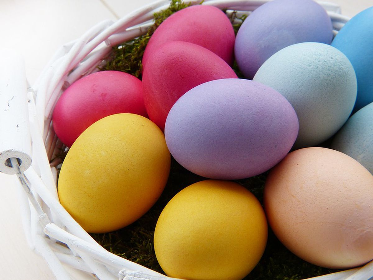 Egg hunts and Easter events across the Cape Fear region