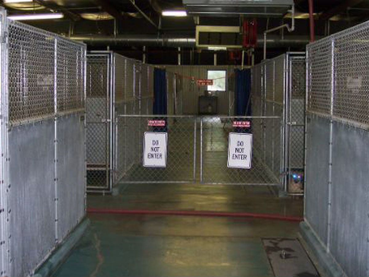 Brunswick County Animal Shelter closed until March 15 due to COVID-19 exposure