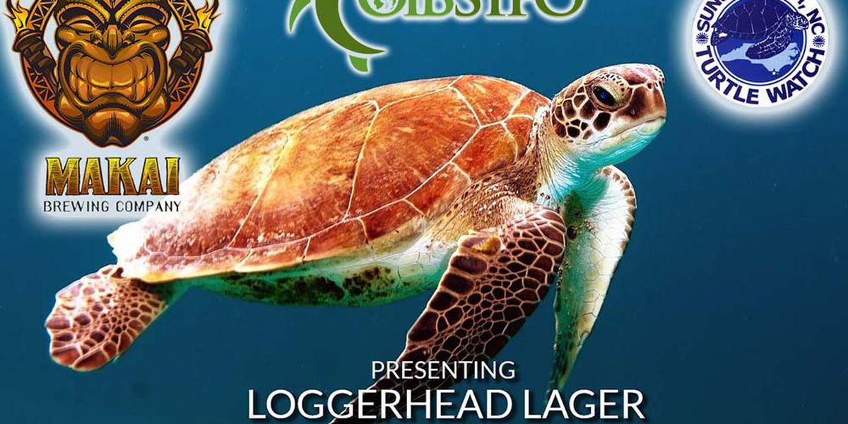 Brewery releases special batch of beer benefiting sea turtle rescue