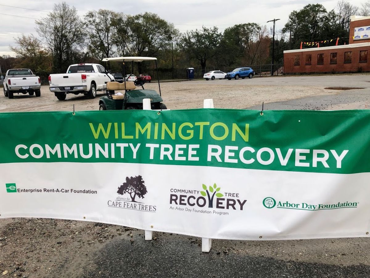 Groups team up to offer free trees to replace ones lost in Hurricane Florence