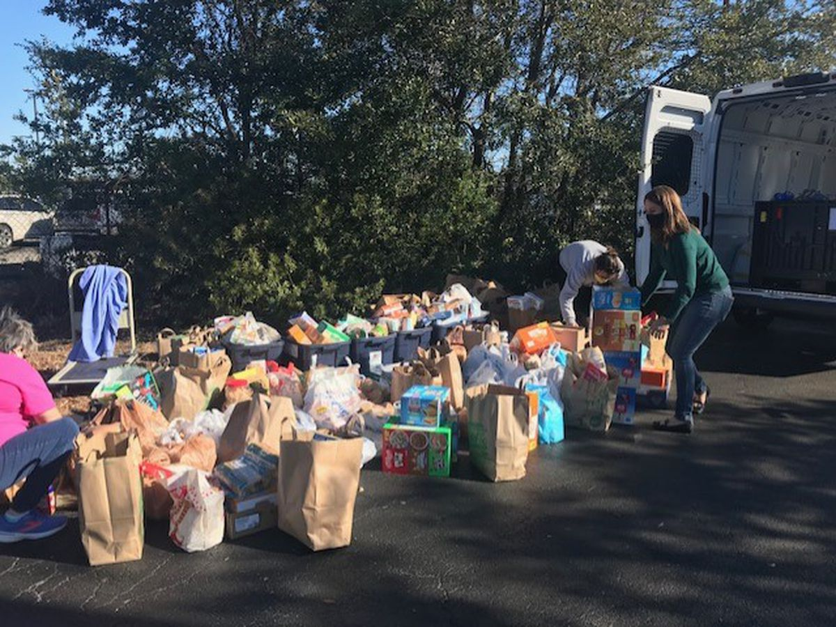 NHC Democratic Party hosts food drive in honor of MLK Day