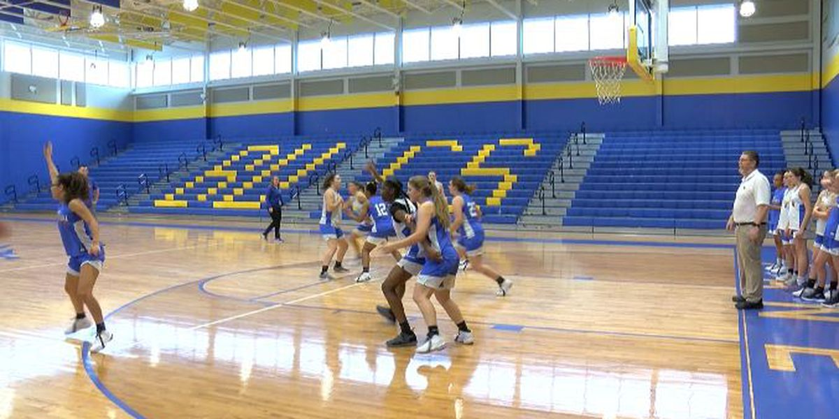 Youthful Laney girls ready to continue playoff run