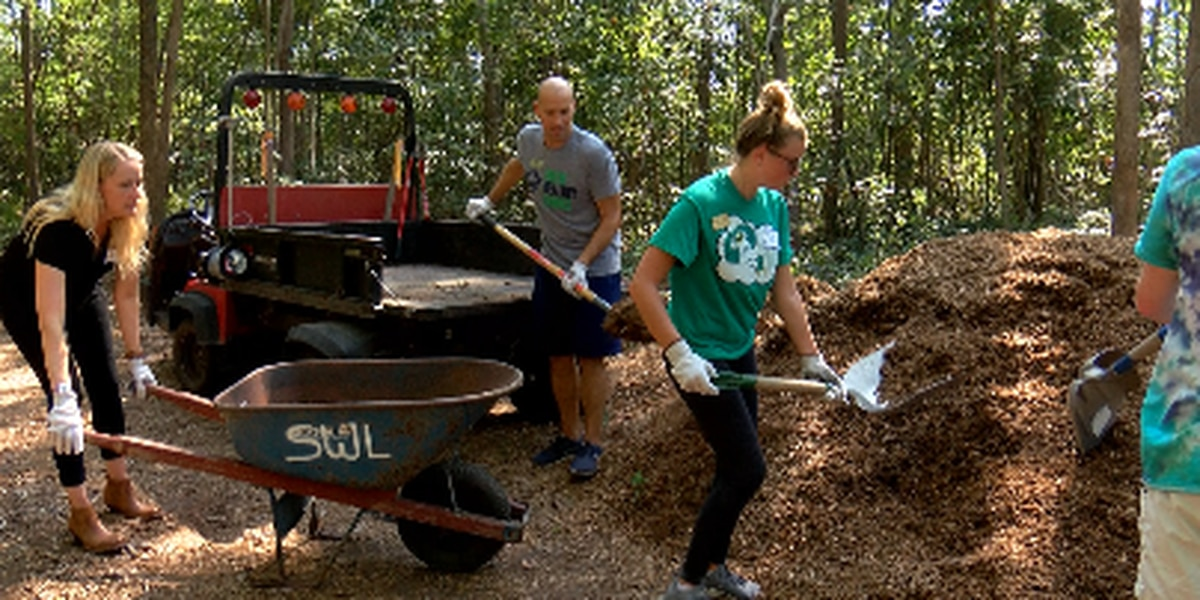 UNCW students, faculty work to restore Bluethenthal Memorial Wildflower Preserve