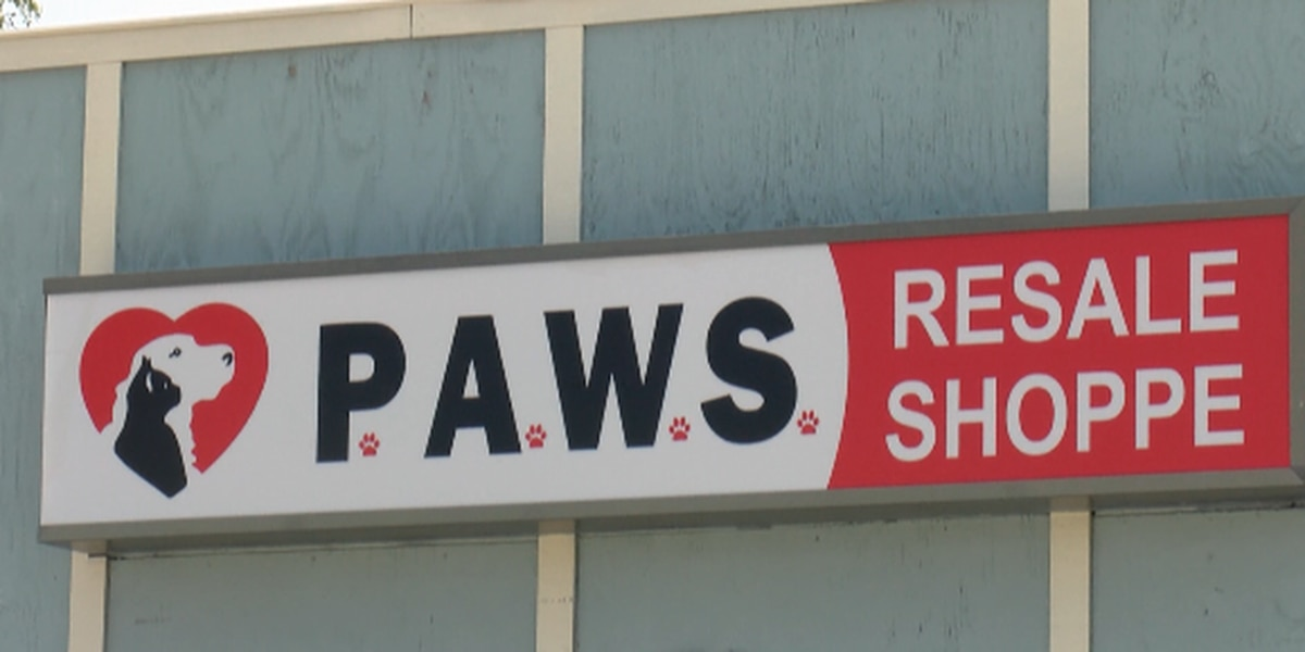 Former employees of Salty Paws continue closed store's mission of helping animals in need