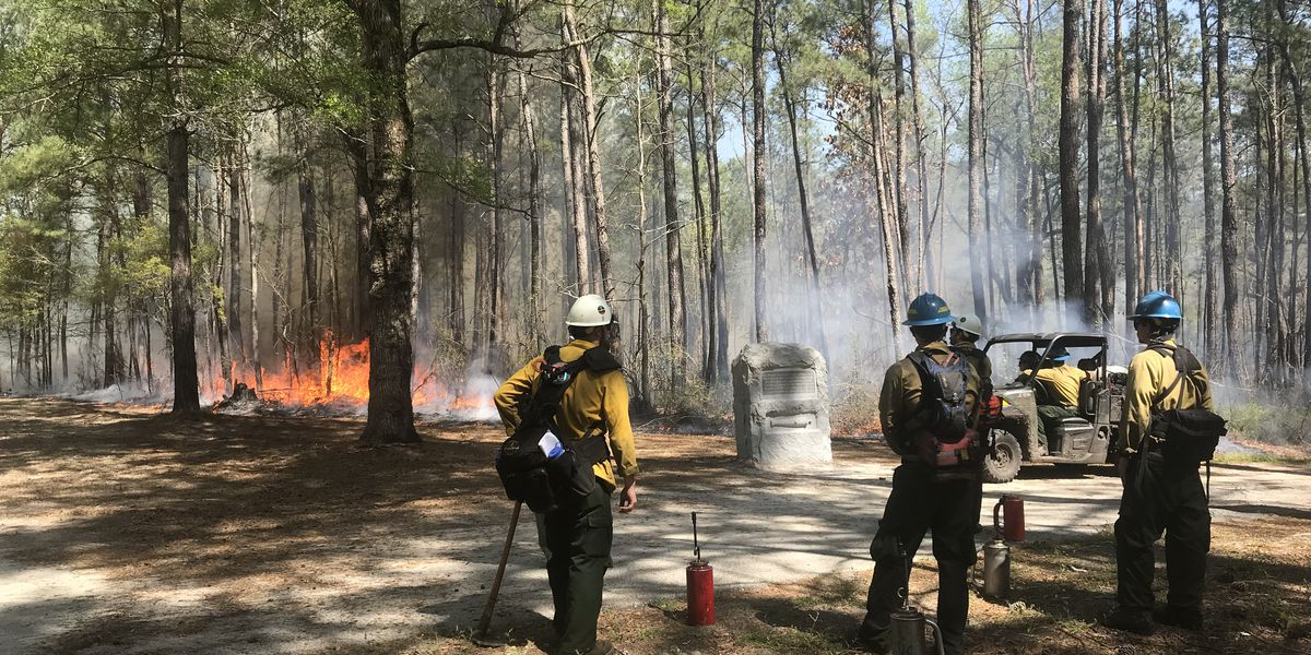 Controlled burn planned for Moores Creek National Battlefield Thursday