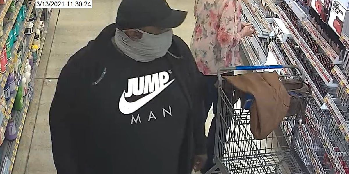 Suspects sought after fraud, larceny at Porter's Neck businesses