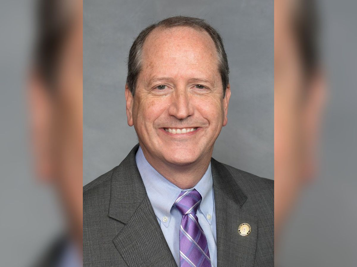 Republican Dan Bishop unofficial winner in 9th District re-do election