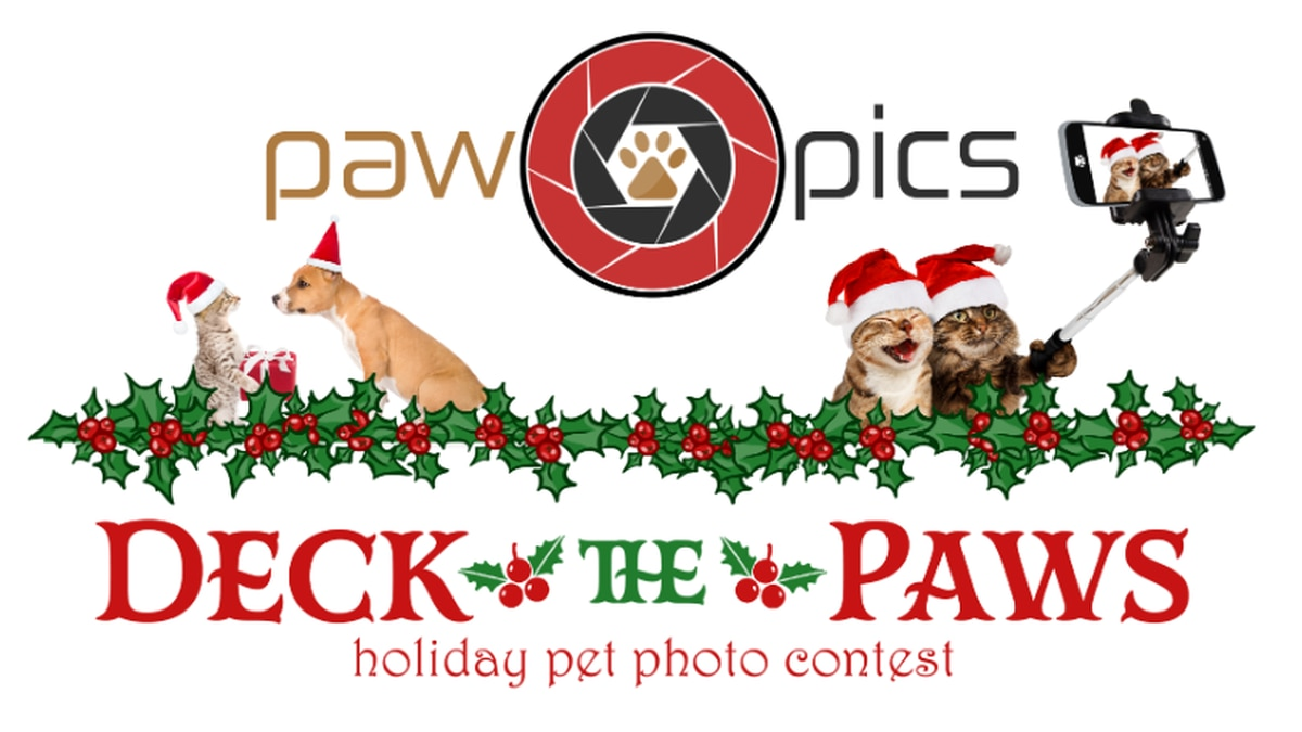PAW PICS: Deck the Paws holiday pet photo contest
