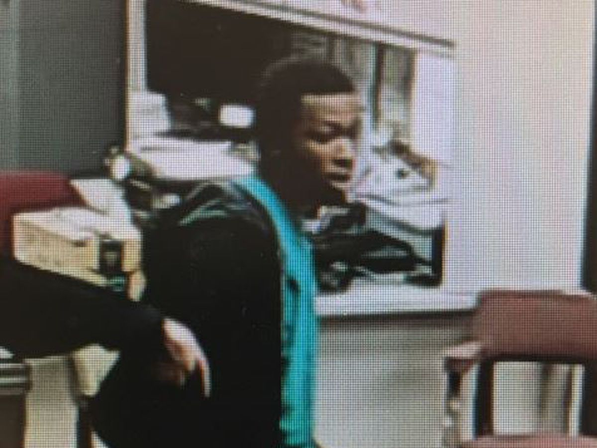 Tabor City police looking for suspect in break-ins