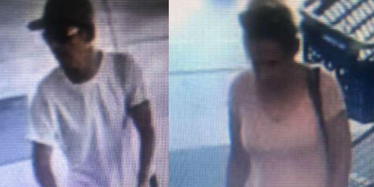 Sunset Beach police: Two wanted for questioning in Food Lion theft