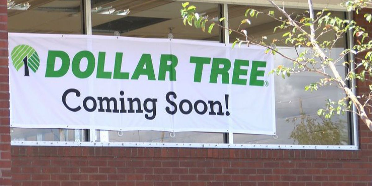 Dollar Tree sets up in former Rite Aid store