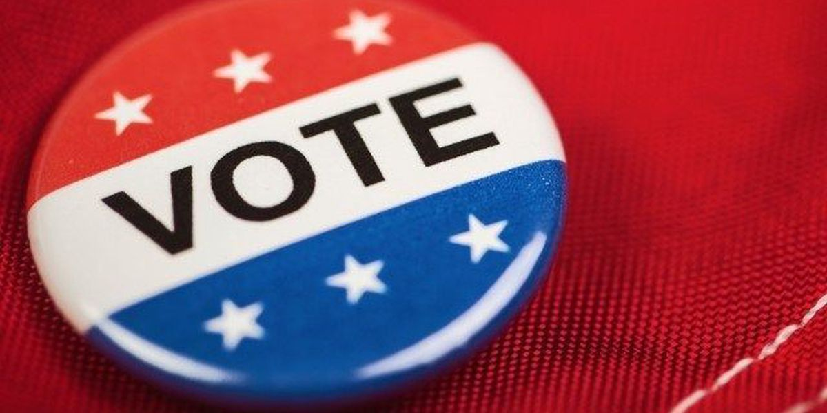 Make your voice heard during primary elections