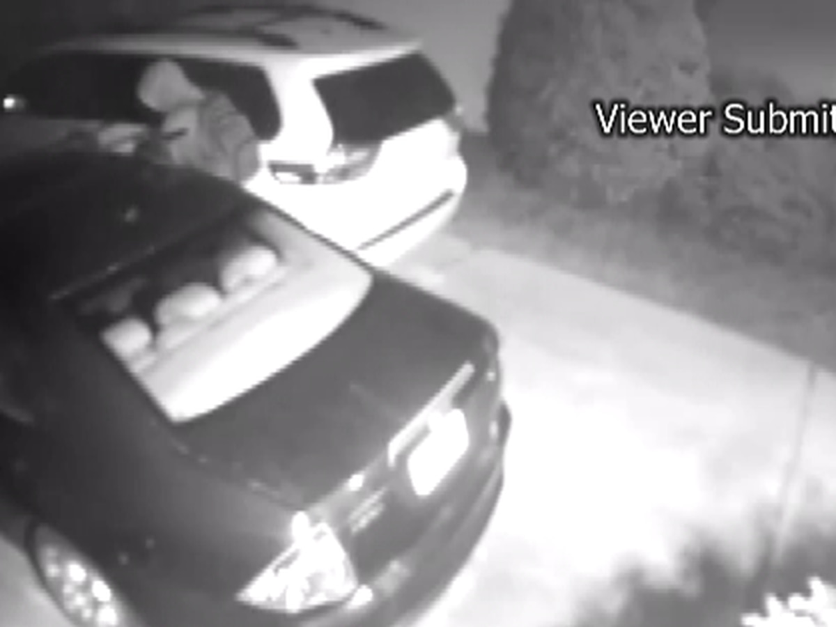 New Hanover County Sheriff's Office says car break-ins have risen significantly