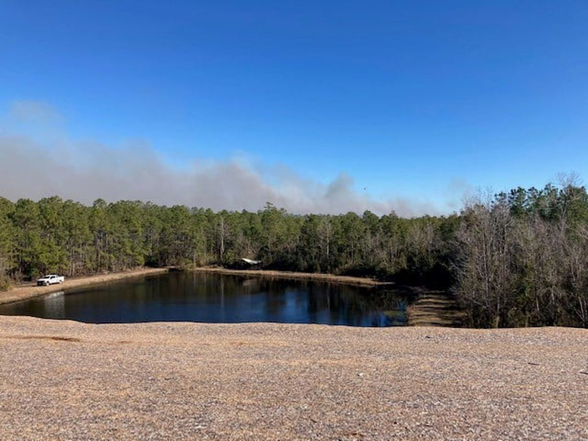 N.C. Forest Service monitoring landfill fire in Pender County