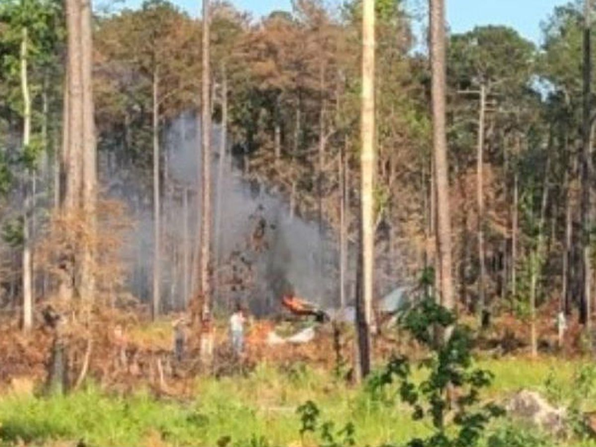 Military plane crash reported near Havelock