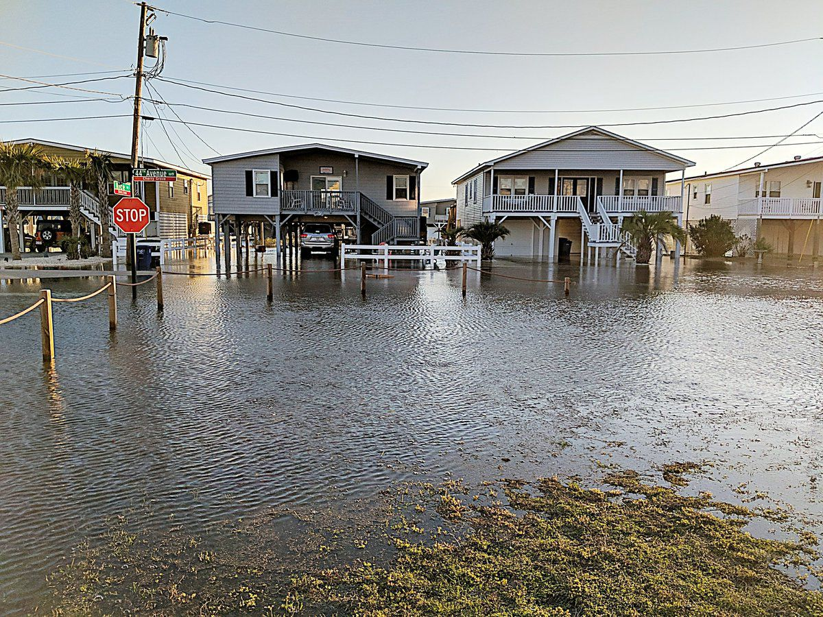 Scientists need your help with The N.C. King Tides Project