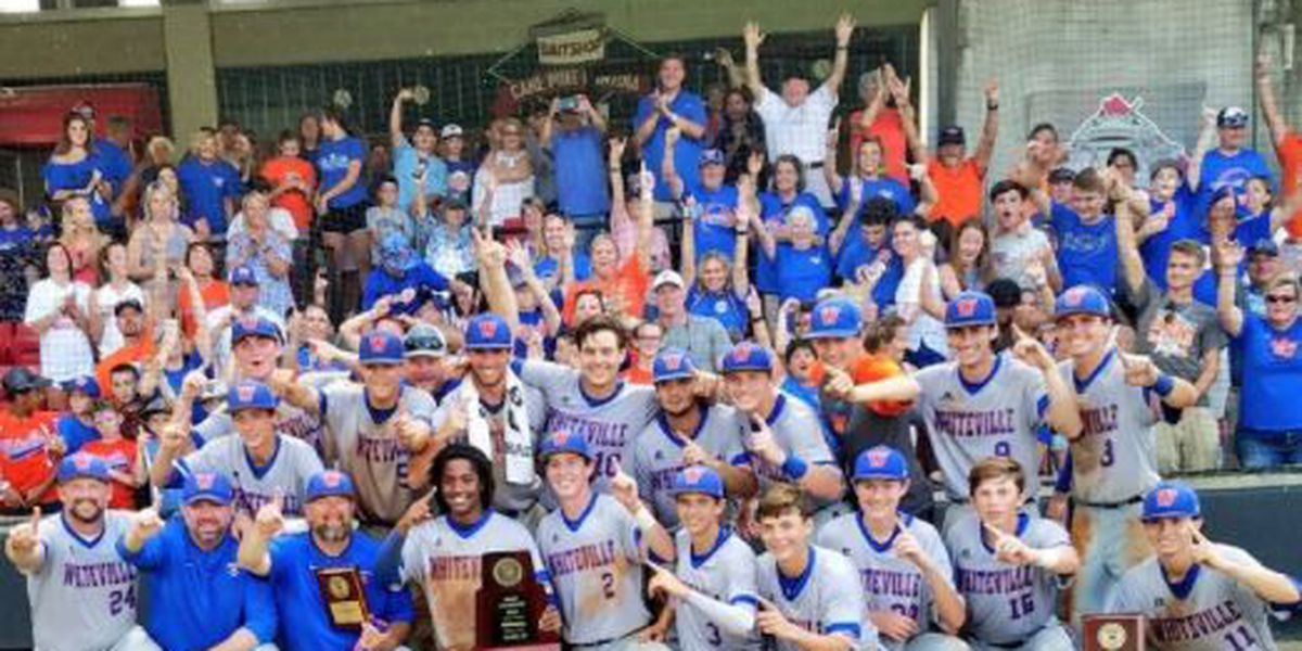 Back-to-back state champs: Whiteville baseball earns its ninth ring in school history