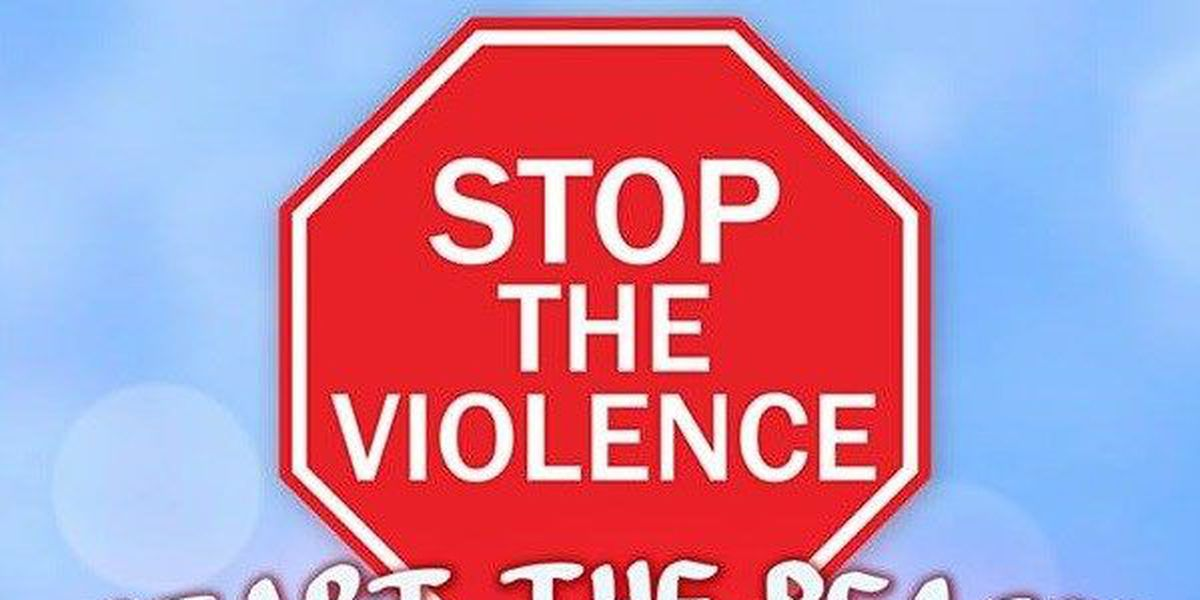 Anti-violence rally hopes to bring community together