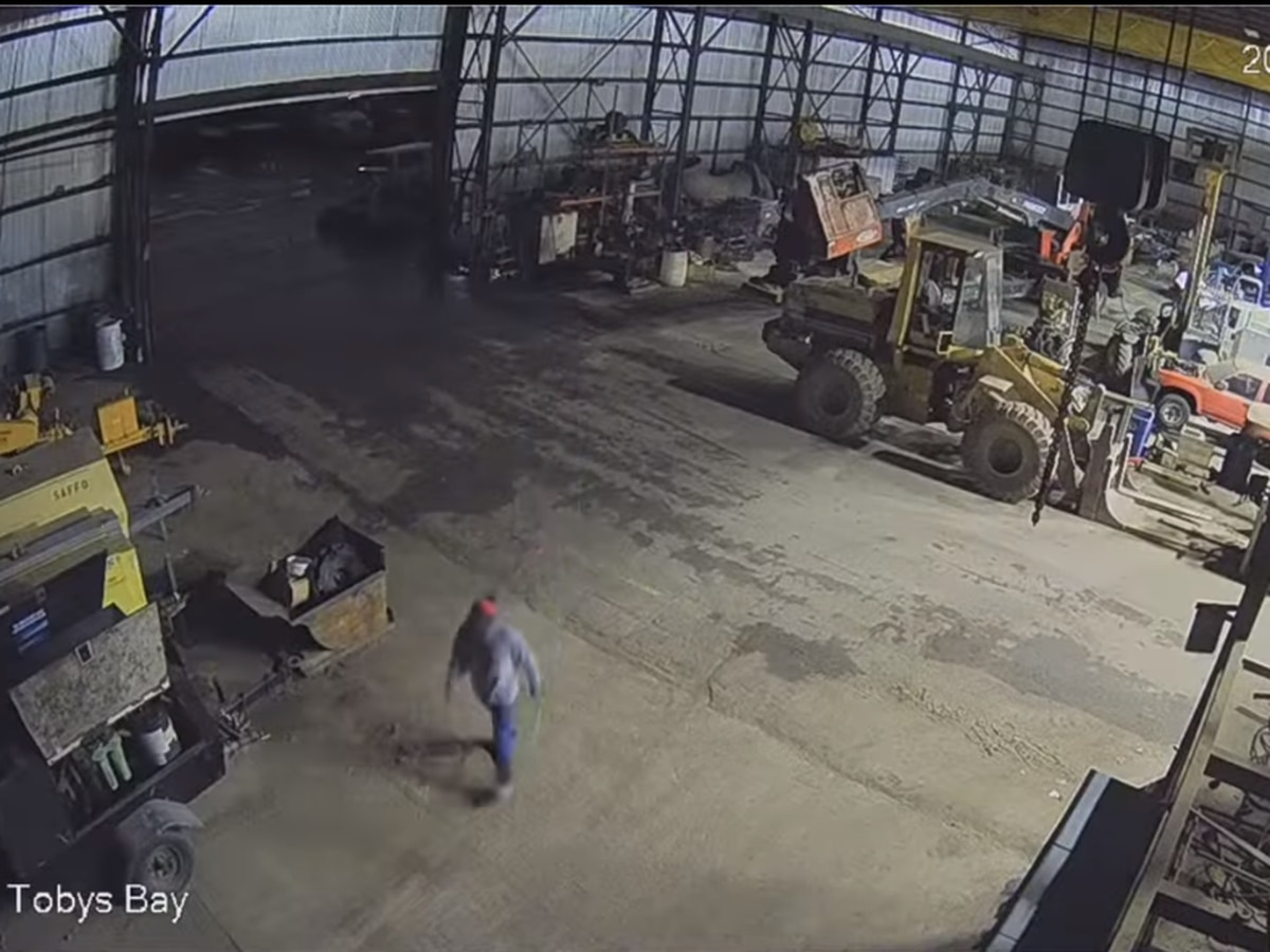 NHCSO searching for individual in relation to vehicle theft from business